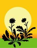 Flower Silhouette. Illustrations Flower Silhouette background vector vector illustration