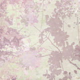 Flower Silhouette Print on Pastel Background Stock Photography