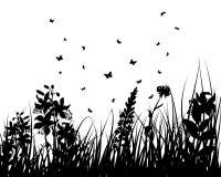 Flower silhouettes Stock Photos