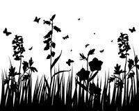 Flower silhouettes. Vector grass silhouettes backgrounds with insects Vector Illustration