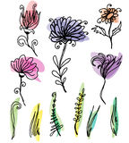 Flower sketches set. Nice colourful background with hand drawn flowers Stock Photography