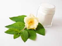 Flower and skincare. Small jar, in him cosmetic, beside it flower and green leaves stock photography