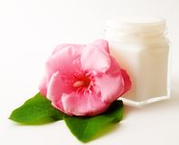 Flower and skincare. Small jar, in him cosmetic, beside it flower and green leaves royalty free stock images