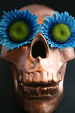 Flower Skull Stock Images