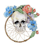 Flower skull Stock Photos