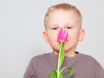 Flower smell kid Stock Photos