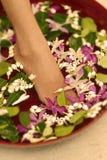 Flower spa κύπελλο Στοκ φωτογραφία με δικαίωμα ελεύθερης χρήσης