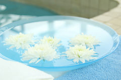 Flower spa Stock Photography