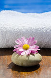 Flower spa relax Stock Image