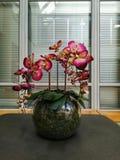 Flower in spherical vase stock images