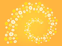 Flower spiral (flower swirl) in different shades of white, yellow and orange - background (theme, card) Royalty Free Stock Image