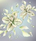 Flower spring Stock Photo