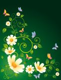 Flower spring  background,  Stock Images