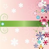 Flower spring background Royalty Free Stock Photography