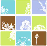 Flower squares Stock Images