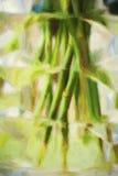 Flower stalk in vase. Flower stalk in glass vase artistic Royalty Free Stock Photos