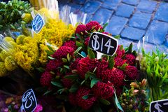 Flower stall arrangements royalty free stock photography
