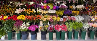 Flower Stand Stock Photography