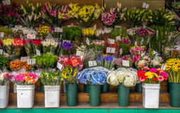 Flower stand Royalty Free Stock Photography