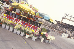 Flower stand in front of business destroyed by rio Stock Photography