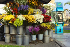 Flower Stand in Lima, Peru Royalty Free Stock Photos
