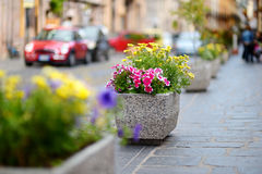 Flower stand in a small italian town Stock Photo