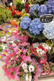 Flower stand on the station Stock Images