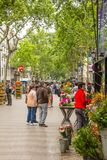 Flower stands in La Rambla street, in Barcelona Stock Images