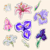 Flower Stickers tender colors hand drawn in vector fashion badges Royalty Free Stock Photos