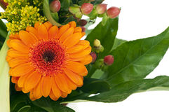 Flower still life. With gerbera, goldenrod and little red berries Royalty Free Stock Images