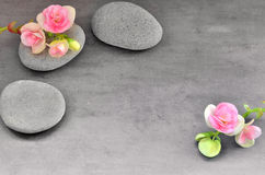 Flower and stone zen spa on grey background Stock Photos