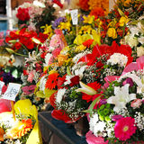 Flower store Royalty Free Stock Images