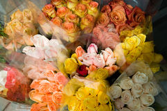 Flower store Stock Photography