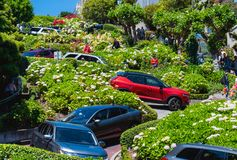 Free Flower Street At San Francisco Stock Photo - 150998750