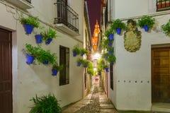 Flower street Calleja de las Flores Cordoba, Spain Royalty Free Stock Photos
