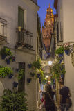 Flower Street in Cordoba Royalty Free Stock Images