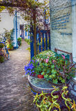 Flower street in town stock image