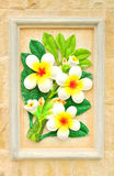 Flower stucco. Thai style on the Wall Royalty Free Stock Photography
