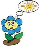 Flower and sun Stock Photos