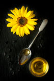 Flower sunflower and safflower oil in a spoon Stock Photography