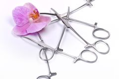 Flower and surgical tools Royalty Free Stock Image