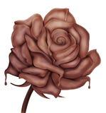 Flower - sweet chocolate love symbol rose. Melted chocolate dripping from the 3d chocolate rose flower, Isolated illustration Stock Photo