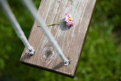 Flower on a swing Royalty Free Stock Image