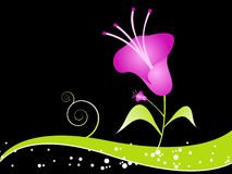 Flower on swirl. On dark background royalty free illustration
