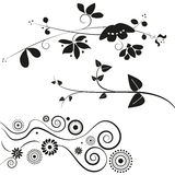 Flower and swirl decorations. Set of three different flower and swirl decorations in black, isolated on white background. Vector. Eps available Royalty Free Stock Photo