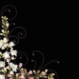 Flower and swirls border vector Royalty Free Stock Images