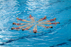 Flower synchronized swimming. Young athletes in synchronized swimming Royalty Free Stock Photo