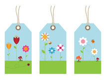 Flower tags Stock Image
