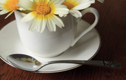 Flower Tea Royalty Free Stock Images