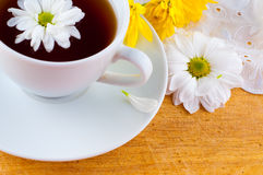 Flower tea with a camomile. Royalty Free Stock Photos